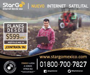 Stargo_300x250-300x250.jpg