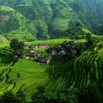 Logística de agricultura china