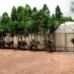 Instalaciones de la agricultura protegida