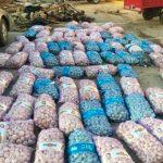 Decomisan 80 costales de ajo procedentes de Haití