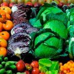 Alimentación, agricultura y clima