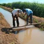 Apoya Fundación Produce Sinaloa proyecto para mejorar eficiencia de agua en maíz y frijol