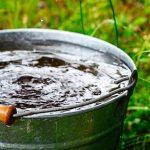 Aprovechan agua de lluvia en Sinaloa