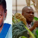 Combaten ceguera con sorgo en África