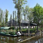 Chinampas, Patrimonio Agrícola Mundial: FAO