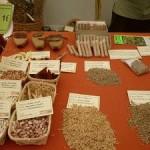 Colpos anuncia la primera Muestra de Recursos Genéticos en Puebla