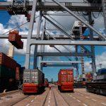 Comercio internacional de plantas y semillas