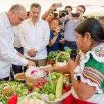 Conocimientos en tecnología benefician a pequeños agricultores