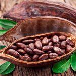 Mexicanos consumen poco chocolate mexicano