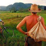 Gobierno de Cuba dotará de internet a sus campesinos