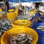 Denuncian los abusos laborales en la pesca de Tailandia