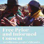 Derechos de pueblos indígenas, base del desarrollo