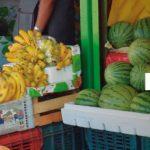 Reduce México desnutrición crónica infantil