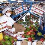Destaca el agro en exportaciones