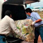 Recolección de envases vacíos de agroquímicos