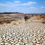 Escasez de agua en la agricultura