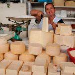 Investigación sobre queso cotija gana Premio Nacional en Ciencia y Tecnología