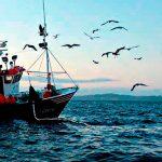 Programa de Fomento a la Productividad Acuícola y Pesquera