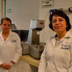 Científicos desarrollan nuevos usos para fructanos de agave en alimentos