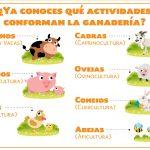 La ganadería mexicana