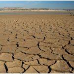Mejor preparación necesaria para prevenir impactos de la sequía