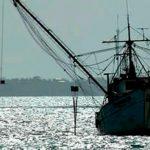 Impulsar sustentabilidad de sector pesquero