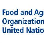 Índice de precios de los alimentos baja en abril, FAO