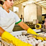 Investigador de Chapingo pronostica colapso en producción alimentaria