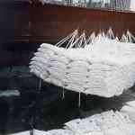 Produce Jalisco uno de cada 10 kilogramos de azúcar del país