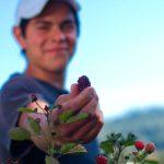 Jóvenes mexicanos en el campo