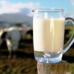 Sector lácteo nacional, nicho de oportunidades: Canilec