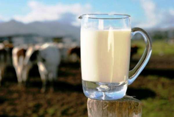 Sector lácteo nacional, nicho de oportunidades: Canilec - 2000Agro ...