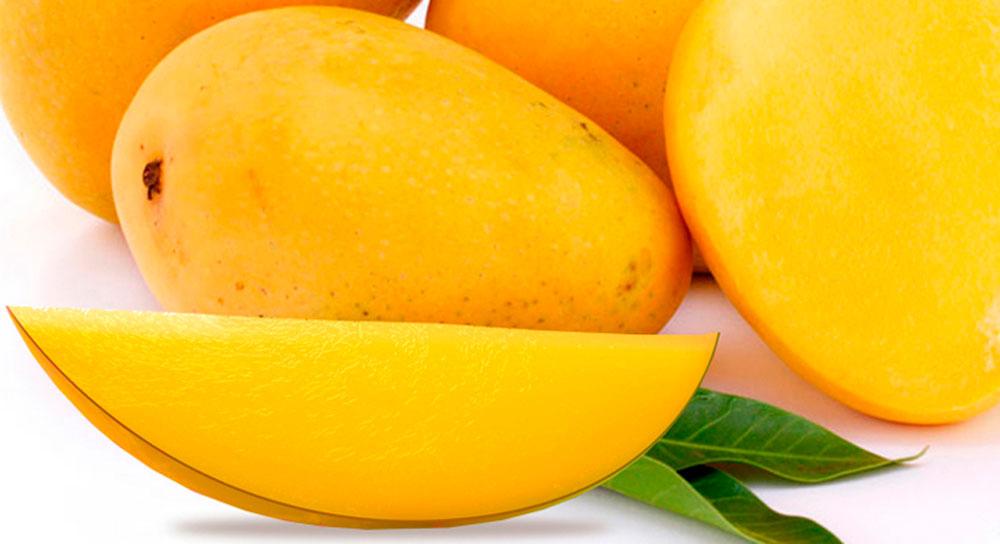 mango-organico