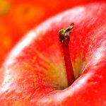 Manzana permiten regenerar hueso y cartílago