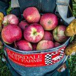 Manzanas, pollo y cerdo, las armas de México en el TLCAN