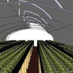 Más de 100 millones para agricultura protegida