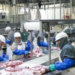 México, prestigioso exportador de alimentos