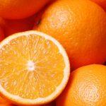 Perros detectan HLB en naranjas