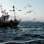Compesca y Michoacán darán rumbo a pesca y acuacultura
