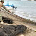 Aseguran artes de pesca prohibidas en Tamaulipas