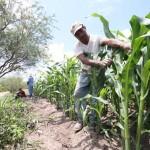 Pide Congreso de Colima declaratoria de emergencia por lluvias