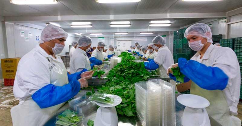 Resultado de imagen para eeuu productores de alimentos