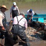 Sagarpa y Conapesca dialogan con productores pesqueros