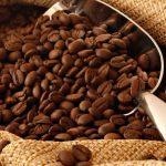 Promueve gobierno de Chiapas exportación de productos regionales