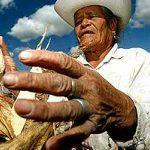 Propone la FAO atender desarrollo rural y seguridad alimentaria