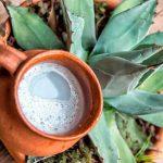 Pulque, ideal para combatir problemas intestinales