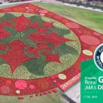 Jardines de México recuerda su Record Guinness por árbol floral