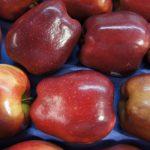 Residuos de manzana y salud