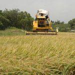 Promueve Senasica importancia de investigación para la agricultura