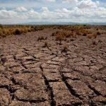 Bolivia busca 250 mdd para combatir la sequía
